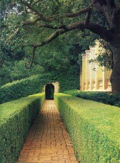 Ravenwhimsy's Wonderful World Formal Gardens, Outdoor Gardens, Contemporary Landscape, Landscape Design, Formal Garden Design, Boxwood Garden, Parking Design, White Gardens, Garden Paths