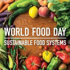 """Today is World Food Day and the theme this year is """"Climate is changing. Food and agriculture must too"""". ❄⚡☔ The global population is growing steadily and is expected to reach 9.6 billion by 2050👪. To meet such a heavy demand, agriculture and food systems will need to adapt to the adverse effects of climate change and become more resilient, productive and sustainable. Livestock 🐓🐂🐖contributes to nearly two thirds of agricultural greenhouse gas (GHG) emissions, and 78% of agricultural…"""