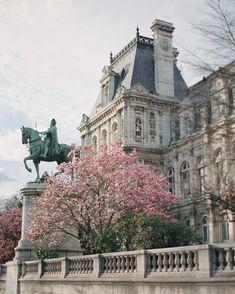 Paris via Greg Finck