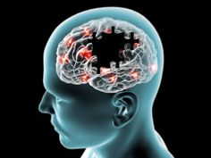 Piracetam, Aniracetam and Noopept Dangers and Risks (And Other Racetams)