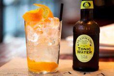 09-gin-tonic.w529.h352.2x