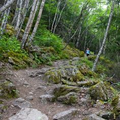 Hiking in Skagway, Alaska and what to do at ports on an Alaskan cruise