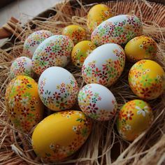 Easter goose egg from Slovakia / Husí kraslice ze Slovenska