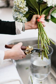 Cutting the stems of