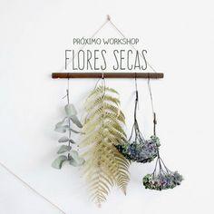 2 for 1: Flores Secas    Workshop