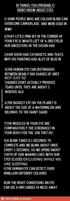 10 things you probably didnt know about eyes