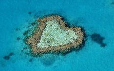 Scoperta una seconda barriera corallina sotto la Grande Barriera australiana Mostrate le prime immagini e mappature 3D della colossale barriera corallina situata nelle profondita' marine al di sotto della Grande Barriera Corallina australiana. #grandebarrieracorallina #australia