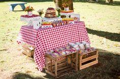 picnic party festa