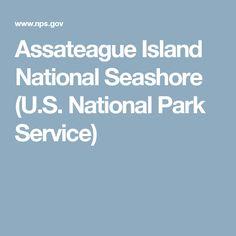 Assateague Island National Seashore (U.S. National Park Service)