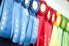 horse show ribbons  The Polohouse