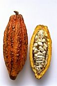 Cacao seed pod, cut open
