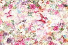 Mural Brewster Home Fashions Prisma Wall Deco Design, Bird Design, Wall Design, 4 Wallpaper, Accent Wallpaper, Ornamental Mouldings, Art Decor, Decoration, Flower Bird
