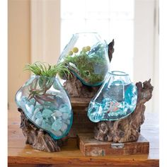 Glass & Wood Sculpture | Glass Vases | Wind & Weather