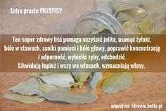 Ten super zdrowy liść pomaga oczyścić jelita, usunąć żylaki, bóle w stawach, artretyzm, zaniki pamięci i bóle głowy, poprawić koncentrację i odporność, wybielić zęby, odchudzić. Liście tej rośliny (i przyprawy) likwidują łupież i wszy we włosach, wzmacniają włosy, odstraszają karaluchy i mole spożywcze. Extra proste PRZEPISY Czy jednak wiesz, że roślina ta daje poza zastosowaniem w kuchni wspaniałe efekty dla zdrowia? Jej niesamowite liście mają wiele właściwości leczniczych. Można z nich…