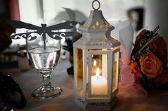 Lanterns & dragonflies