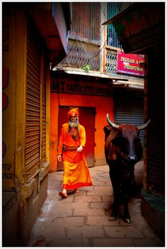 Walking in Varanasi, India ....WE walk with our dogs ....they walk with the caw
