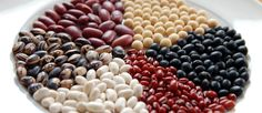 Preventing Prediabetes By Eating More - study shows that eating 5 servings of beans a week is more effective than calorie counting