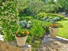 Un jardin à St Remy de Provence