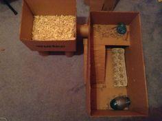 DIY Playpen project! - Hamster Central