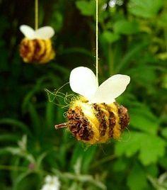 Little bees from alder cones