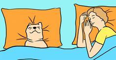 Todo lo que se escucha no hay que hacerlo: como por ejemplo no invitar a tu perro a tu cama. La gente cree que es sucio, y que no es bueno para ti. La gente lo ha estado diciendo durante años. Pero, ¿y si te decimos que tal vez eso no es del todo cierto? Hay beneficios reales para la salud al dejar que tu mejor amigo de cuatro patas pase la noche contigo, y no son sólo beneficios para ti. ¡También es mejor para tu perro! ¿Y no quieres hacer todo lo posible para asegurarte de que tu pequeño…