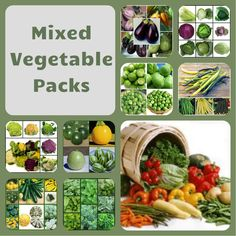 Vegetable Plants Direct provide top quality young vegetable, herb and fruit plants some of which are organic in various plug and pot sizes which are all available mail order from our shop. Planting Vegetables, Mixed Vegetables, Growing Vegetables, Fruit Plants, Growing Plants, Herbs, Organic, Canning, App