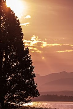 Sunset, Yellowstone National Park,  Wyoming