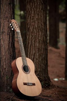Acoustic Guitar Android Wallpaper HD