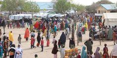 """""""La mayoría de la población en Pulka, Nigeria, son desplazados que huyen del conflicto. Nos cuentan que los hospitales y los mercados no funcionan porque los han quemado y que apenas pueden cultivar o conseguir leña para cocinar. Las necesidades son enormes."""""""