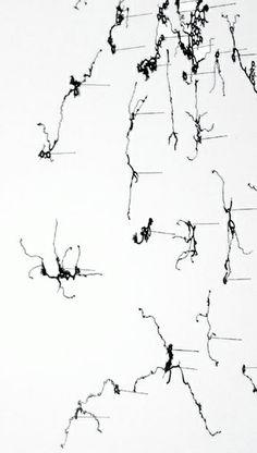 Anne Wilson   topologies