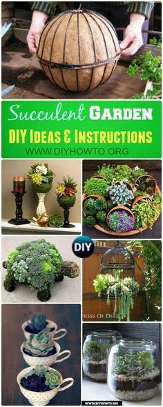 Landscaping ans Interior Design with Succulent Garden Planter Designs and Display Ideas via /diyhowto/