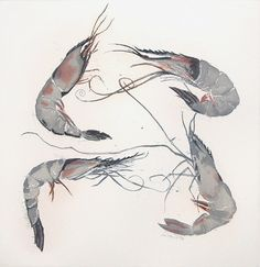 Langoustine by Elizabeth Blackadder, watercolor. I really like the delicate lines used in the feet and feelers of the prawns, I also like the limited colour range because even though there are so few colours you can septillion clearly see the details and it makes it realistic.  I also like it because of the way the prawns are arranged as if the are facing different directions.