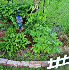 Lillies, Peony Bush, and Garden Decor