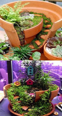 DIY BROKEN POT FAIRY GARDEN IDEAS [PICTURE INSTRUCTIONS]