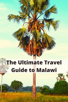 sandwiched between Tanzania and Mozambique, the tiny country of Malawi in southeastern Africa welcomes those looking for a relaxing holiday in a beautiful unspoiled part of the world. In this post, you'll find everything you're looking for an amazing vacation in Malawi. From the recent history of Malawi to the warm people and top things to do in Malawi.