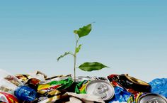 Know the importance of waste recycling to save environment. Important tips to remember about waste disposal in Dartford and its advantages. Benefits Of Recycling, Recycling Facts, Paper Recycling, Recycling Services, Recycling Programs, Medical Waste Management, Puerto Rico, Green News, Compost
