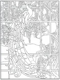 Peacock coloring page 23/31
