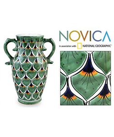 @Overstock - With a recurring dream of peacock feathers, this amphora's fluid grace suggests classic art  The Castillo Family works in the style of Talavera pottery to craft this beautiful vasehttp://www.overstock.com/Worldstock-Fair-Trade/Ceramic-Jade-Peacock-Vase-Mexico/2460748/product.html?CID=214117 $53.99