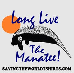 $.50 from each purchase is donated to the save the manatee club Manatees aren't just for oceans anymore, now you can take a manatee with you wherever you'd like to go with these cool bumper stickers b