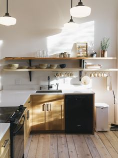 The Incredible kitchen cabinets, designed and built by Ben Klebba of Phloem Studio