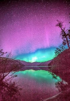 And I think to myself, what a wonderful world. Why have I never seen such beauty in person. I need to get out more. See the Northern Lights