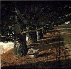 wetreesinart: Andrew Wyeth, Pine Baron, 1976