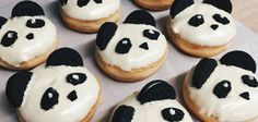 California Donuts - PANDA donuts!! Thanks to @kerialexander for discovering!