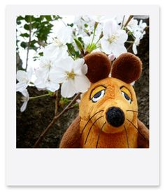 Die Maus is standing under the cherry blossom tree. : 旅するマウス