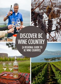 With a wide ranging geography and terroir, BC is one of the most exciting wine regions in North America - we take you on a tour of what you can expect when visiting BC wineries. Sweet Champagne Brands, Things To Do In Kelowna, Margaret River Wineries, Wine Tourism, Types Of Wine, Wine Deals, In Vino Veritas, Wine Drinks, Travel