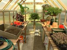 Tips for Organizing a Greenhouse greenhouse gets organized for healthy plants