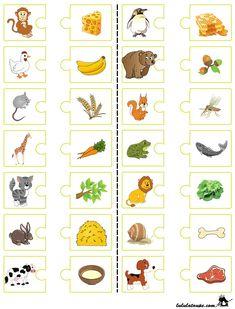 Kto je co?  Prawidłowo połącz każde zwierzę ze swoim ulubionym jedzeniem