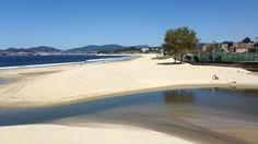 Playa de Samil. Vigo. Dunas en la desembocadura del río Lagares.