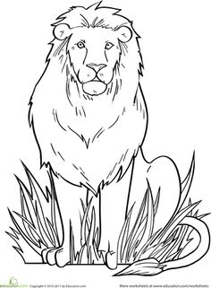 343 best amazing art images drawings animales art education lessons Beaver Diagram andy and the lion lion coloring page lion coloring pages free adult coloring pages