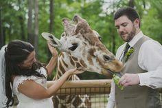 Birmingham Zoo Wedding, #JettWalkerPhotography